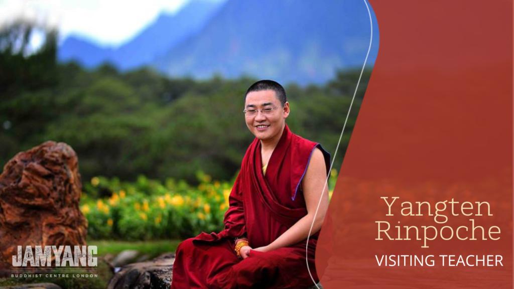 yangten rinpoche